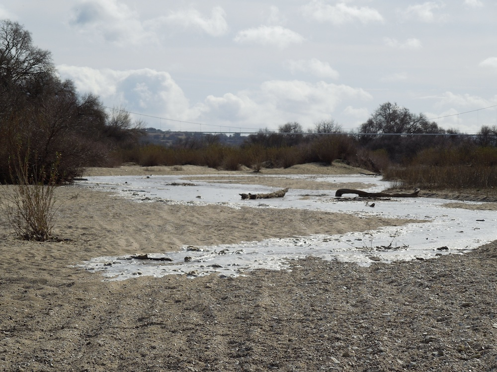 The Salinas River Crept Up on Me